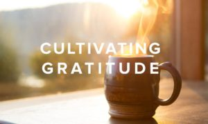 A Word from the President: Cultivating Gratitude
